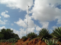 A small wind turbine in Auroville